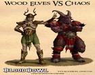 Blood Bowl bloodbowl48.jpg