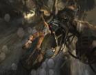 Tomb Raider trreboot040612-4.jpg
