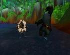 World of Warcraft wowmop39.jpg